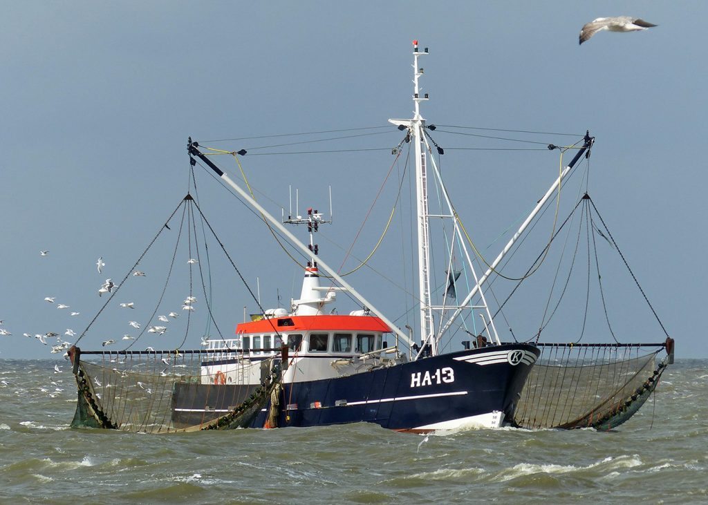 J.G. Koornstra, HA-13 1x DI-13 080M, 300 pk © foto Kotterfoto.nl Hylke Smits